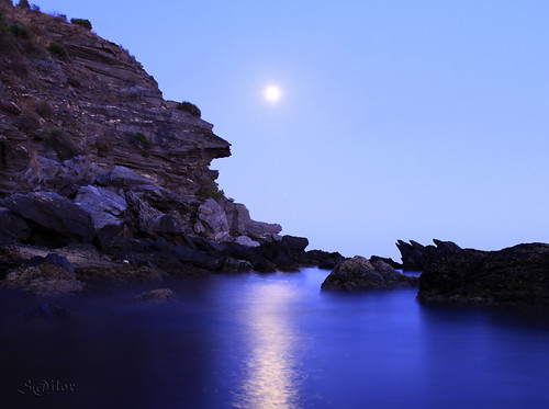 Blue Moon by S@ilor
