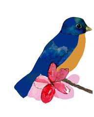 bluebird-august-209-final