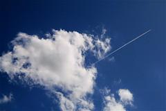 sky &  cloud & vapor trail ....( on such a timeless flight ) (eyeflyer) Tags: blue sky cloud plane fluffy kondensstreifen eyeflyer latesummersky eisschleppe