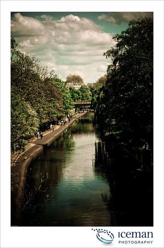London Zoo 018