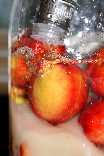 Making Nectarine Liqueur