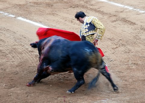 Corrida de Toros Feria Melilla 2009 294