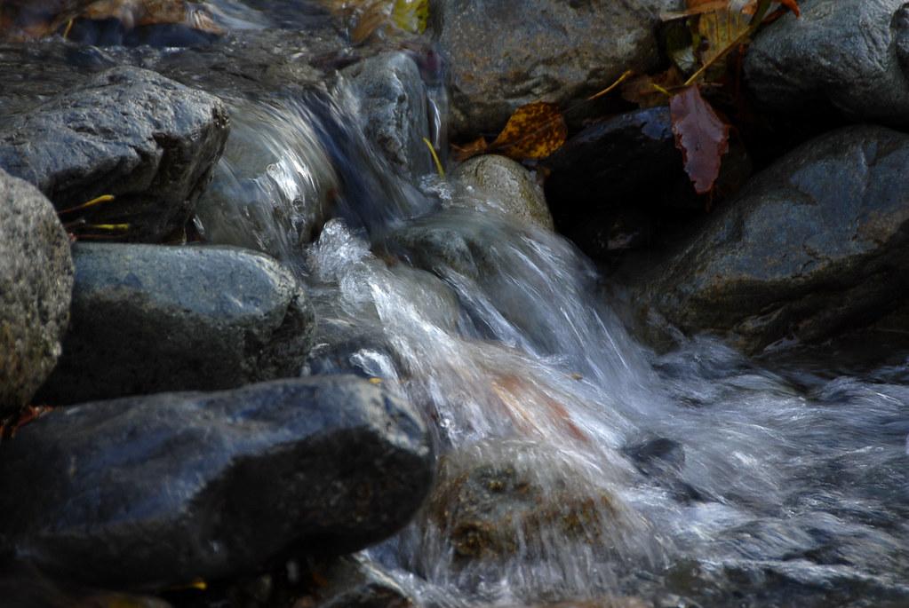Proctor Creek.
