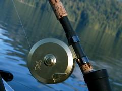 Sonora Resort - Fishing