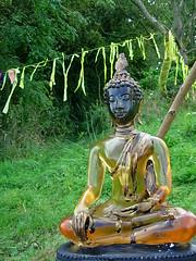 Buddhafield East yellow Buddha
