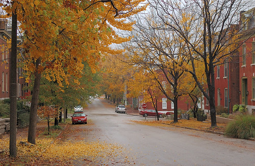 Soulard neighborhood, in Saint Louis, Missouri, USA - street scene with fall colors in the rain