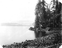 Kasaan Bay, Prince of Wales Island (UW Digital Collections) Tags: alaska beaches bays rowboats naturephotography princeofwalesisland rockybeaches kasaanbay