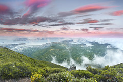 Tamalpais Glory - Marin County, California (PatrickSmithPhotography) Tags: california sunset usa fog clouds landscape unitedstates marin belvedere sanfranciscobay tamalpais monkeyflower sausalito tiburon larkspur millvalley photocontesttnc11