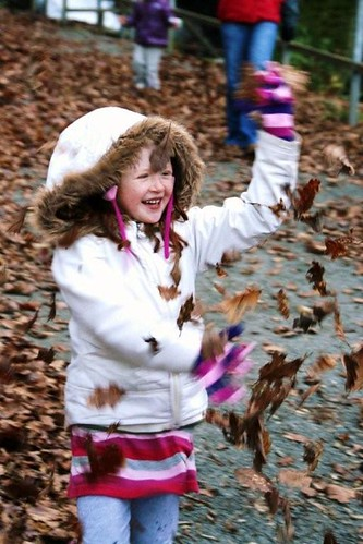 Have some fun in Wales with the autumn leaves
