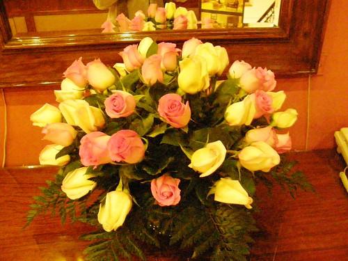 Quito rosas 4