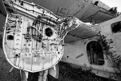 Airplane Graveyard St. Augustine FL (Walter Arnold Photography) Tags: old walter blackandwhite bw white black abandoned broken grave graveyard st digital yard plane airplane geotagged photography junk nikon rust florida decay aircraft military arnold navy rusty sigma dirty abandon rusted mirage rusting fl aged junkyard 1020mm bomber naval augustine geotag staugustine carrier decayed decaying s2 dismantle grumman the junked dismantled d300 sigma1020 antisubmarine walterarnold wwwthedigitalmiragecom thedigitalmiragecom