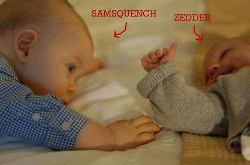 Samaquench zedder