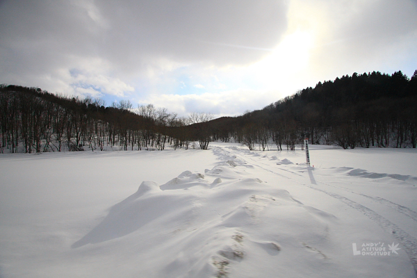 2009北海道-D4-5-道東39號道_04.jpg
