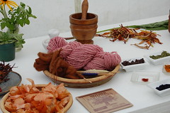 Natural dye display