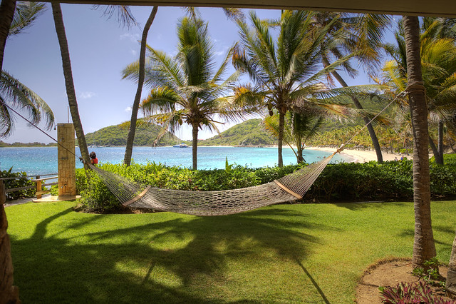 hammock overlooking the beach