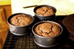 Cooling Mini Cakes