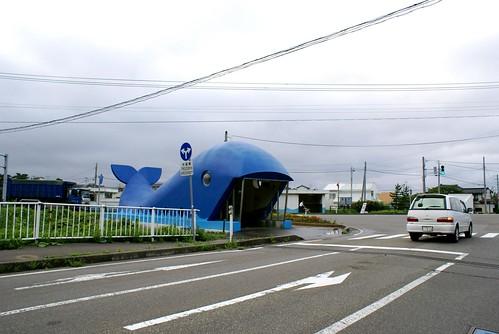 クジラの地下道