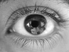 Eye (Atéf AlShehri) Tags: bw test white black macro eye atef iatef alshehri