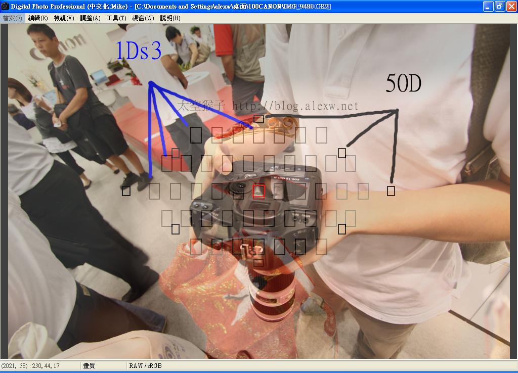 1Ds3 50D 對焦點比較