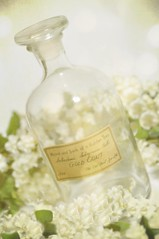 Garden Bottle (luvpublishing) Tags: flowers stilllife garden bottle romantic offwhite tabletop ecru greenandwhite explored vintagebottle vintagelabel ghostworks nikond90 softdreamyandethereal labeledbottle bottlewithstopper