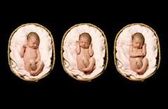 Triple pose (chickadee photography) Tags: basket newborn storyboard onblack