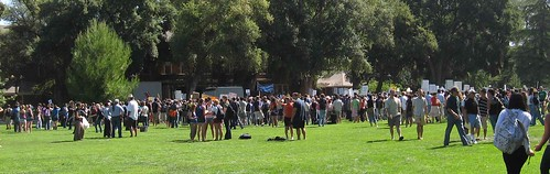 Crowd at Davis, Calif rally