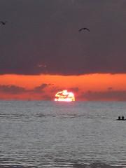Siesta sunset 7 (Abby flat-coat) Tags: sunset beach canon key florida september siesta 018