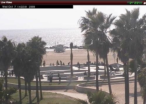 Venice Beach Live Video