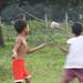Local Neighborhood Boys Flying a Kite