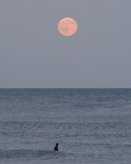 Moon 1: Ocean City NJ (eastcoaster48) Tags: ocean sky moon newjersey surfer shore jersey