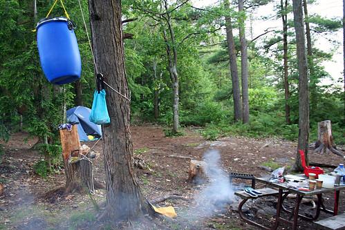 Campsite 402
