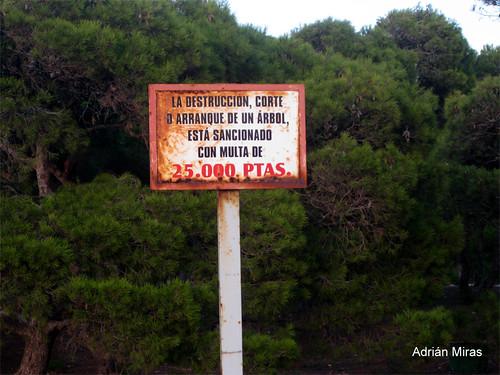 Foto denuncia de Adrián Miras
