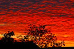 Cambridgeshire Sunset (scuba_dooba) Tags: uk sunset red england sky orange cloud vivid cambridgeshire