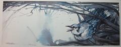 Particularly Disappointed (Jennifer Kraska) Tags: bird watercolor jennifer bluejay kraska jenniferkraska