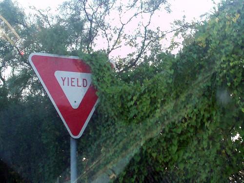 Yield!