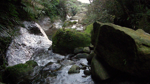 103.不斷地穿越石梯坑溪
