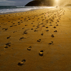 In the spotlight (borealnz) Tags: light sea newzealand beach square sand stclair g silhouettes footprints nz otago dunedin bsquare twtmeblogged footsetps borealnz