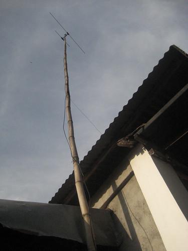 Bamboo Antenna
