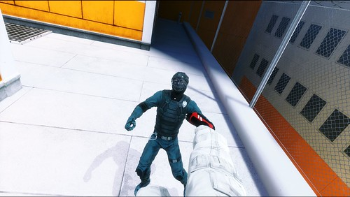 MirrorsEdge 2009-01-19 13-14-13-923 4