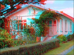 Cottage With Sunflowers in 3D (Ray Tomes) Tags: flowers sun house home garden with cottage auckland birkenhead sunflowers nz raytomes