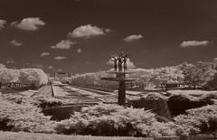 Panoramic View Of Showa Kinen Park Fountain (aeschylus18917) Tags: infrared ir nikon d70 nikond70 surreal tree scenery danielruyle aeschylus18917 danruyle druyle 赤外線 landscape sky ダニエルルール ダニエル ルール park trees grass panorama tachikawashi showacommemorativenationalgovernmentpark 公園 garden 庭 japanesegarden sepia pxt 18200mm