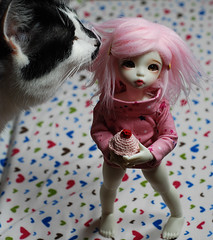 Dont move, somethings in your hair (OhDolly!) Tags: pink cat fur japanese crochet sophie cupcake wig elliot bobtail ws ante sumomo whiteskin littlefee