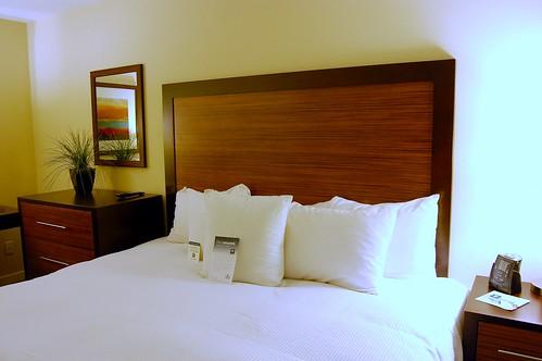 homewood suites 008