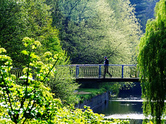 Bridge over untroubled water (Steve-h) Tags: blue trees ireland dublin man green river haze footbridge litter finepix fujifilm earthday dodder steveh 40shadesofgreen riverdodder aplusphoto holidaysvacanzeurlaub platinumheartaward s100fs paololivornosfriends ihaventclonedoutthelitterhaha