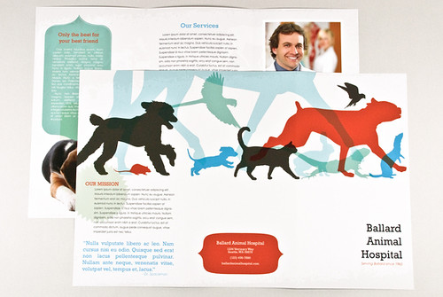 Veterinary Brochure with Silhouetted Animals