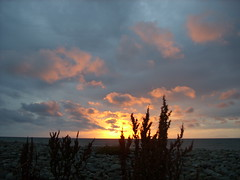 (heleng42) Tags: sunset sea sky plants beach wales clouds llwyngwril