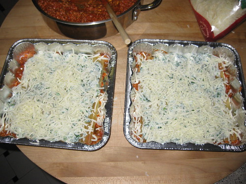 Lasagna with cheese first layer