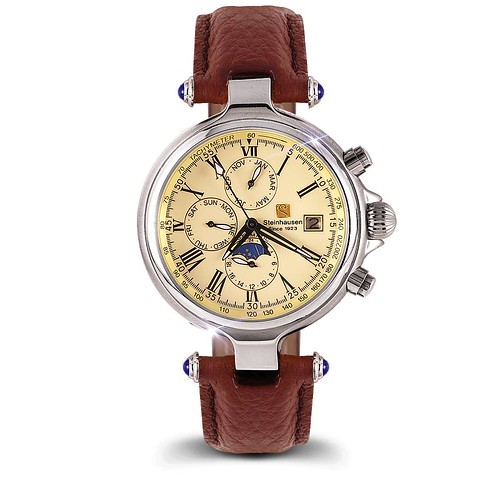Classic Automatic Watch (TW381)