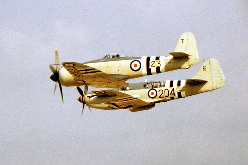 Warbird picture - Hawker Sea Fury and Fairey Firefly