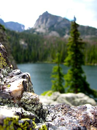 Fern Lake With Feldspars